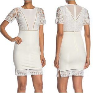 French Connection Viola Lula Lace Dress 6